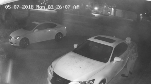burglary caught on surveillance camera