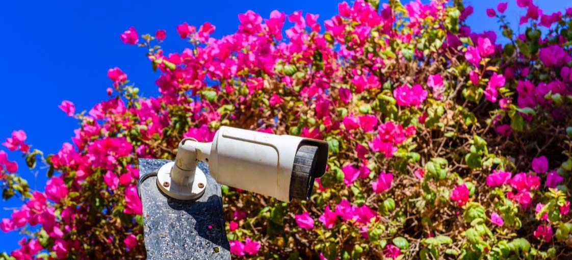 security-cameras-spring-cleaning